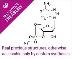 Nucleotide Treasury